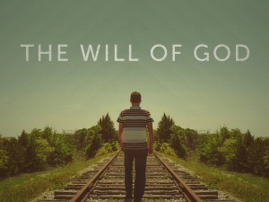 WILL OF GOD_std_t